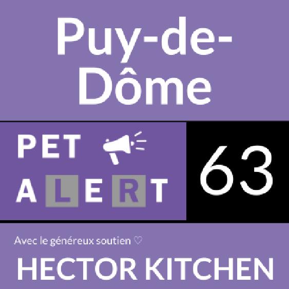 Pet Alert