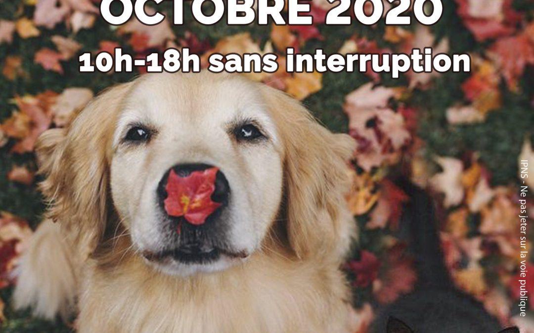 Journées portes ouvertes 3 & 4 Octobre !